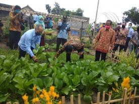 Lonceng Kampung Sayur di Kelurahan Karangwaru